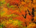 Painting Classes, Autumn Trees, NC