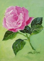 Painting Classes, Pink rose