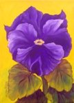 Painting Classes, Purple Pansy