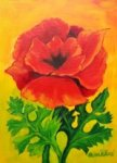 Painting Classes, Red Poppy