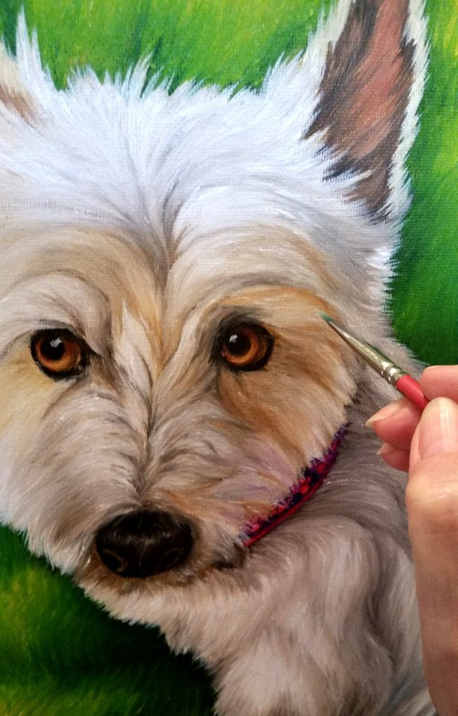 Pet Portrait of Andi, brush to use