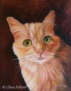 Pet Portrait of Mr Parker by Clina Polloni