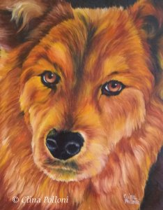 Pet Portrait of Brown Chow Chow